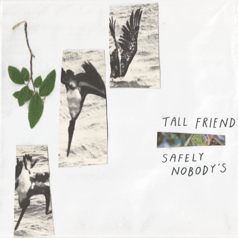 """The Friday Fire Track: Tall Friend – """"Small Space"""""""