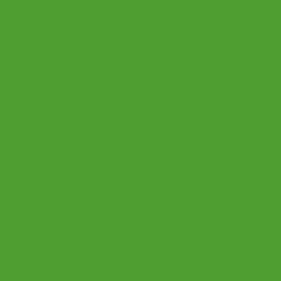 "Ty Segall New Single – ""Alta"""